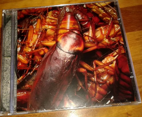 The Joke - Cockroach CD - Classico