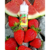 Mega E-Liquids - Watermelon Rush - 60ml