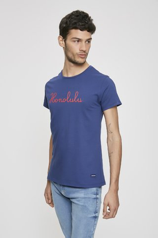 REMERA HONOLULU en internet