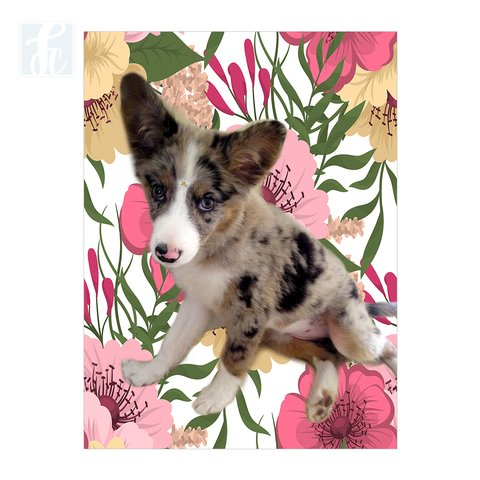 Placa Decor Pet Personalizada - Floral Rosa