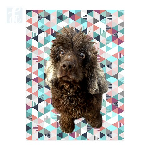 Placa Decor Pet Personalizada - Mosaico Triângulos