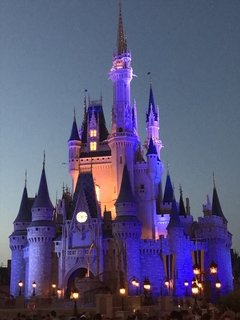 FLEXIBLE - INGRESSO DISNEY PARK HOPPER (SEM DATA ESPECÍFICA) - comprar online