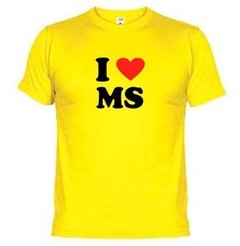 Camiseta Eu Amo Ms Mato Grosso Do Sul 863 na internet