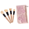 COASTAL SCENTS: 4 face brush set