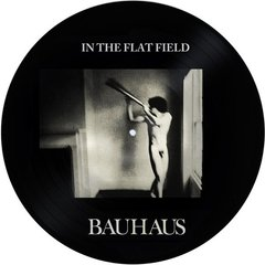 Bauhaus - In The Flat Field LP PICTURE