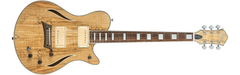 Guitarra Michael Kelly Hybrid Special Maple en internet