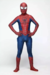 Spiderman Clássico - Pronta Entrega - Hadassa Personagens