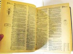 Imagen de Webster's New Encyclopedic Dictionary