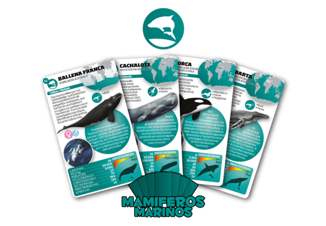 Naipes Educativos Luminias Animales Mamíferos Marinos