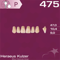 Dente Magister Anterior Superior - Kulzer - Odonto Shopping