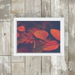 quadro red and brown leaves moldura branca