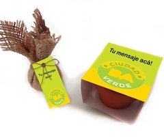 REGALOS EMPRESARIALES- KIT GERMINADOR EN MINI MACETA DE BARRO