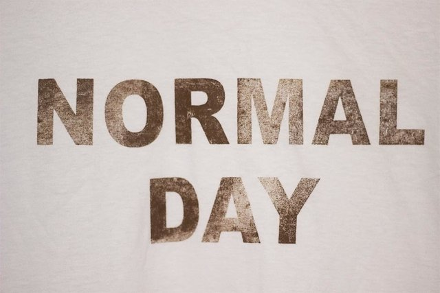 Camiseta Normal Day - loja online