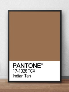 Poster Decorativo Pantone Indian Tan