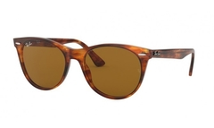 Ray Ban Rb2185 II 954/33 Lighting carey/Marrón