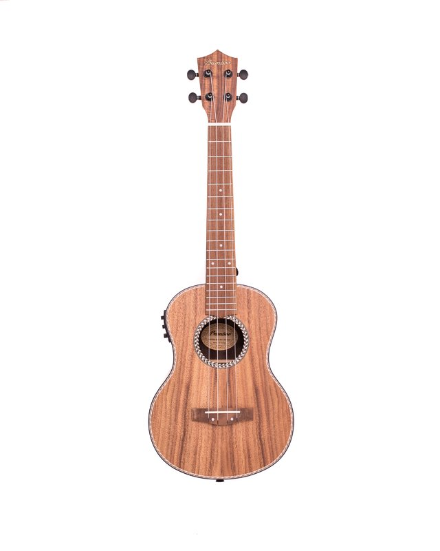 Koa wood Concert Ukulele w/eq (Includes bag) - buy online