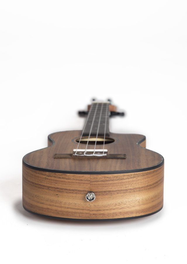 ACACIA wood concert Ukulele (Includes bag) - BAMBOO • Shop Online