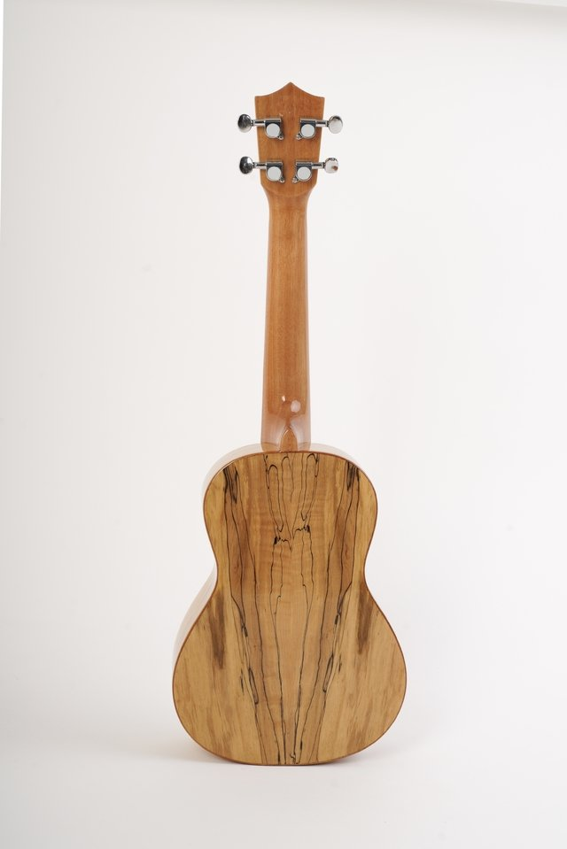 Ukelele Solid Spruce Concierto (BU-23MP) - BAMBOO • Shop Online