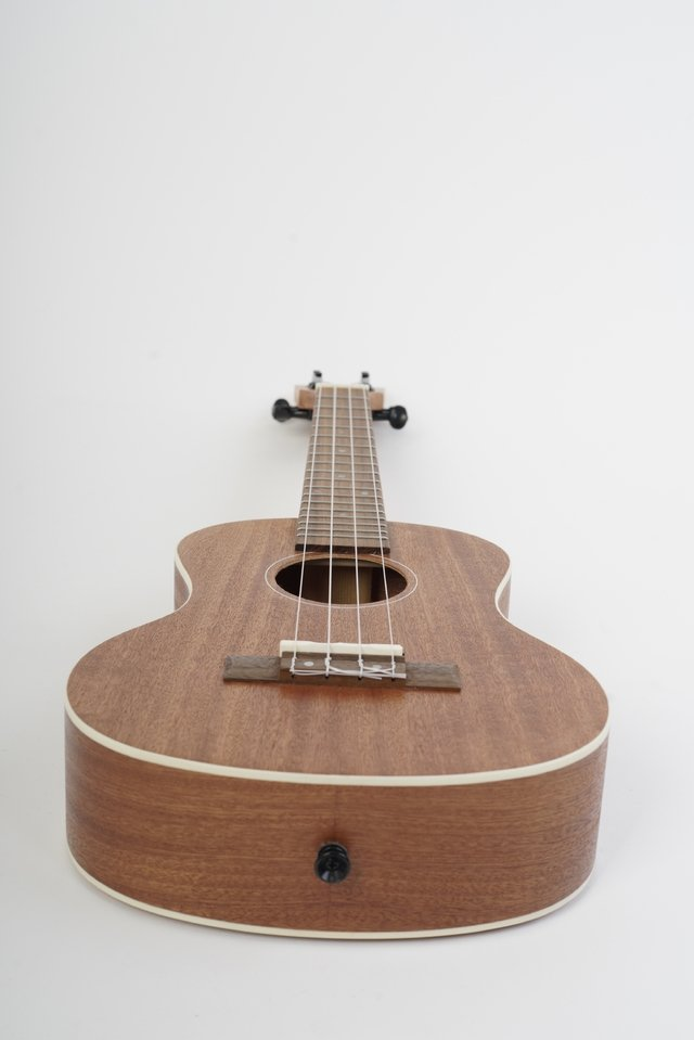 SAPELE wood Concert Ukulele(Includes bag) - buy online
