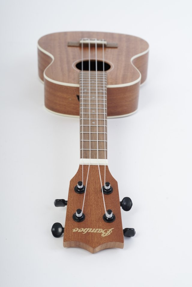 Image of SAPELE wood Concert Ukulele(Includes bag)