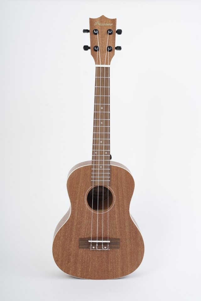 Sapele wood Concert Ukulele (Includes bag) - buy online