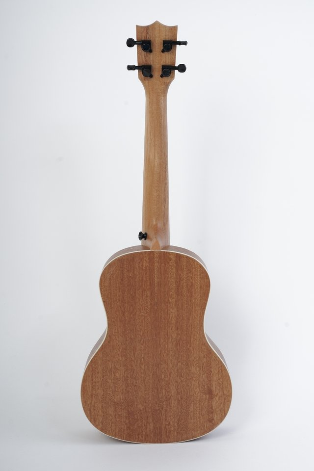 SAPELE wood Concert Ukulele(Includes bag) - BAMBOO • Shop Online