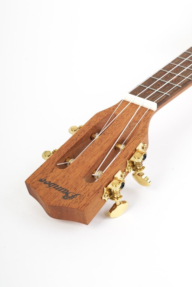 UKELELE THE QUEEN CONCIERTO CON EQ FISHMAN - online store