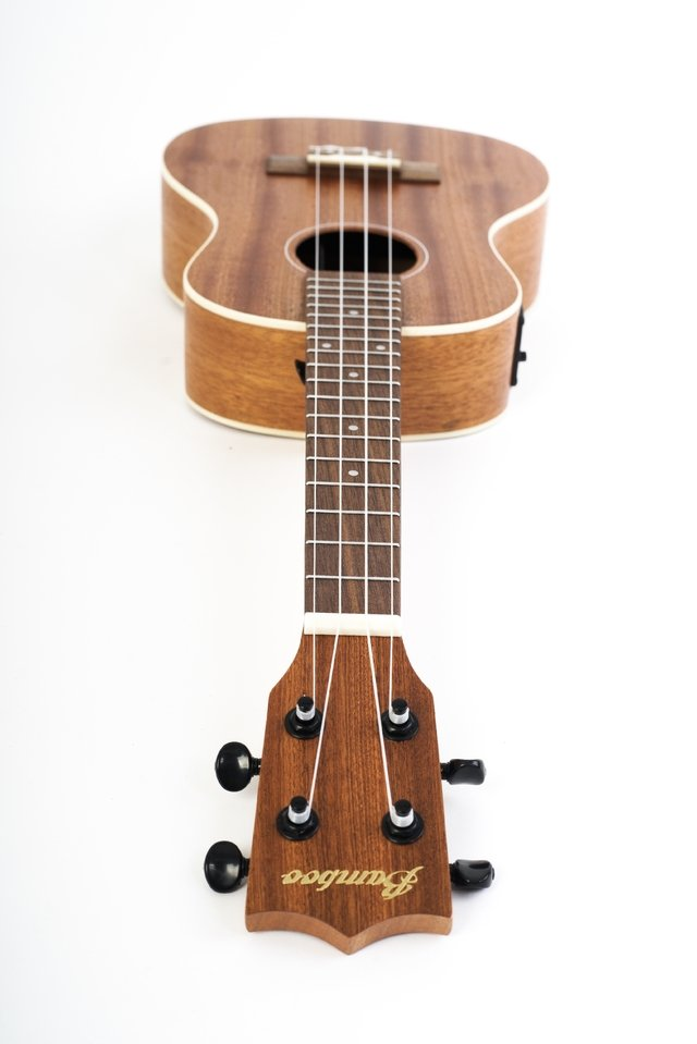 SAPELE wood concert Ukulele  w/eq (Includes bag) - online store