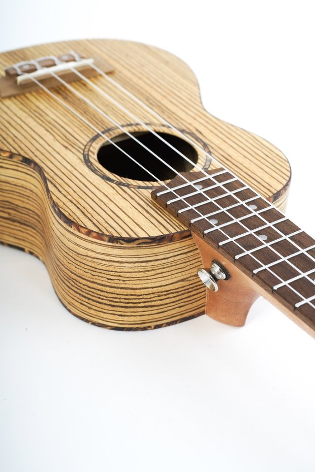Zebrano wood Soprano Ukulele (includes bag) - online store