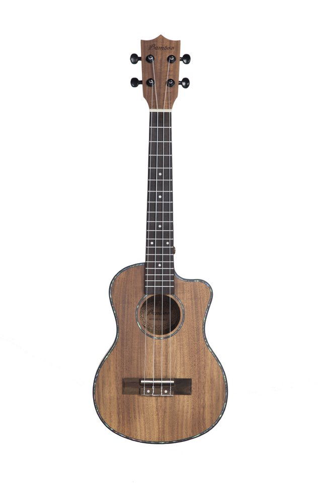 ACACIA wood concert Ukulele (Includes bag) - buy online