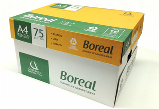 PAPEL SULFITE 75GRS A4 C/500 C/SER BOREAL na internet