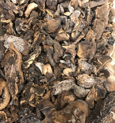 FUNGHI SECO | 100g