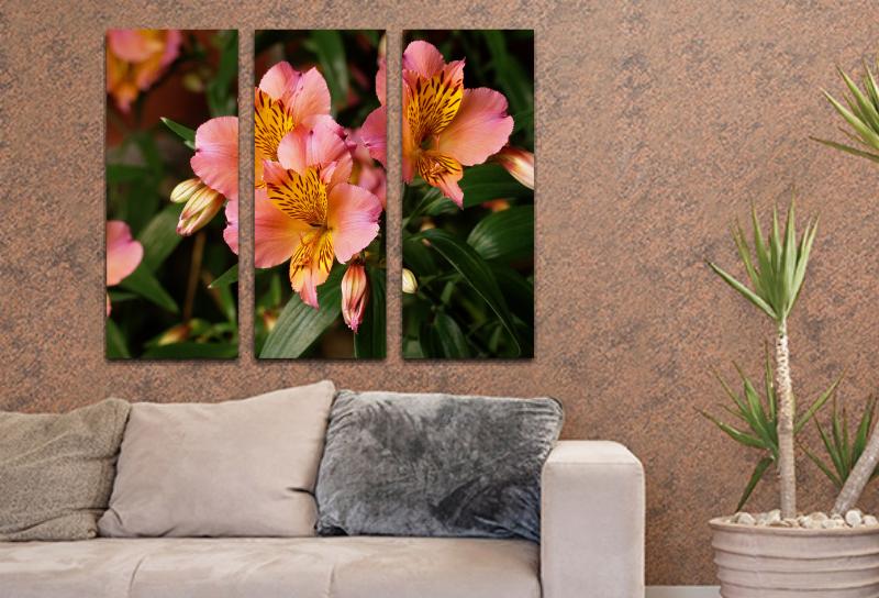 Flores 24  60x50cm