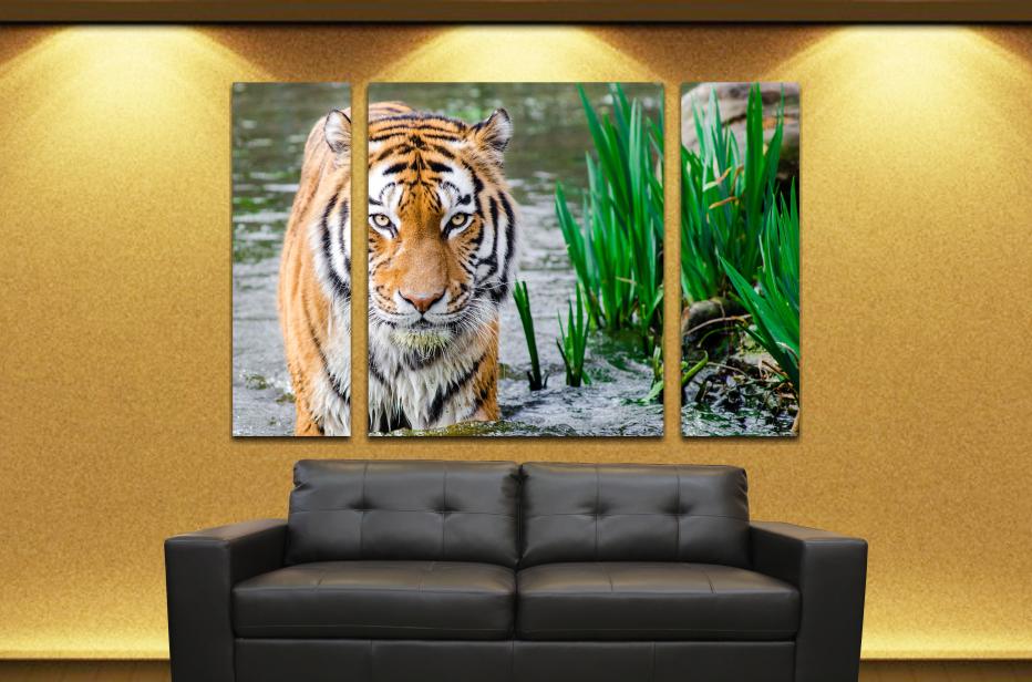 Animales 49  90x60cm