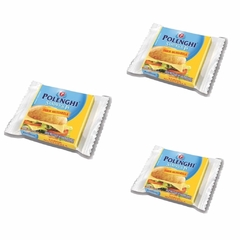 KIT C/3 QUEIJO MUSSARELA SANDWICH-IN 144g