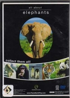 Dvd All About Elephants (45) - comprar online