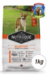 NUTRIQUE MEDIUM PUPPY X1KG
