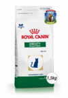 ROYAL CANIN - VET CAT OBESITY DP 41 - (1,5 KG)
