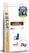 ROYAL CANIN - VET CAT GASTRO INTESTINAL - (2 KG)