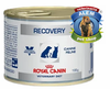 ROYAL CANIN RECOVERY DOG / CAT X 195 GRS