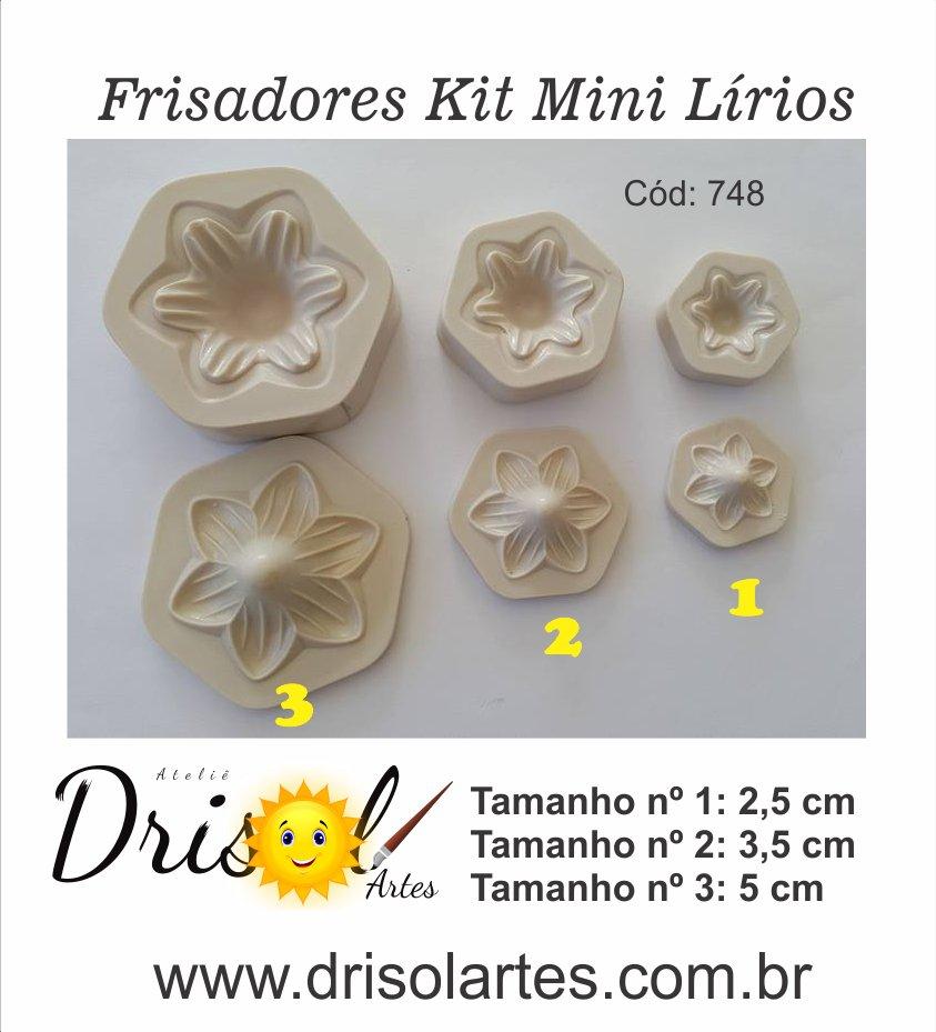 Frisador Kit Mini Lírios - cód  195F - Drisol Artes dbea782bf6
