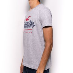 Remera Hollister Gris - Yo te Importo Showroom