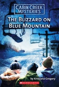 The blizzard on blue mountain