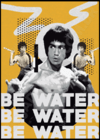 Quadro Bruce Lee - Be Water