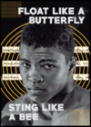 Quadro Muhammad Ali - Sting Like a Bee