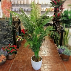 "Areca ""Natural Touch"" (Artificial)"