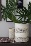 Basketry cylinder - buy online