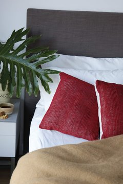 Chaguar cushion - buy online