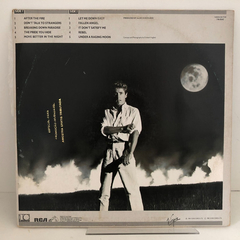 Lp Roger Daltrey - Under A Raging Moon - comprar online