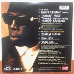 "LP Shabba Ranks - Roots Culture 12"" Mix Importado - comprar online"